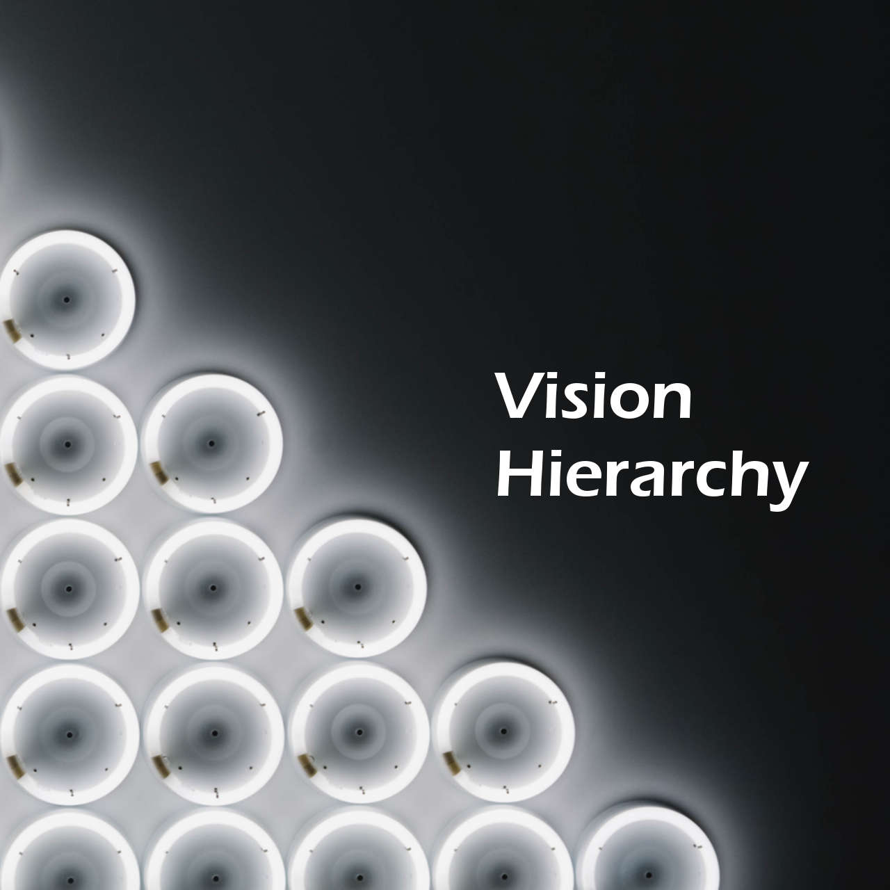 Vision HierarchyLean & Agile Organization Development | agile-od.com by Lifecycle