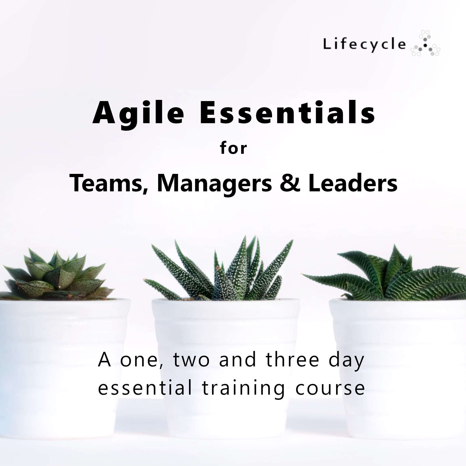 Agile Essentials Training for Teams, Managers & Leaders | Lifecycle