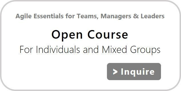 Agile Essentials for Teams, Managers & Leaders, Open Course | agile-od.com | Lifecycle