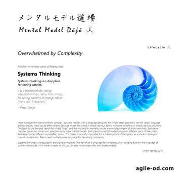 Systems Thinking   Mental Model Dōjō   agile-od.com   Lifecycle