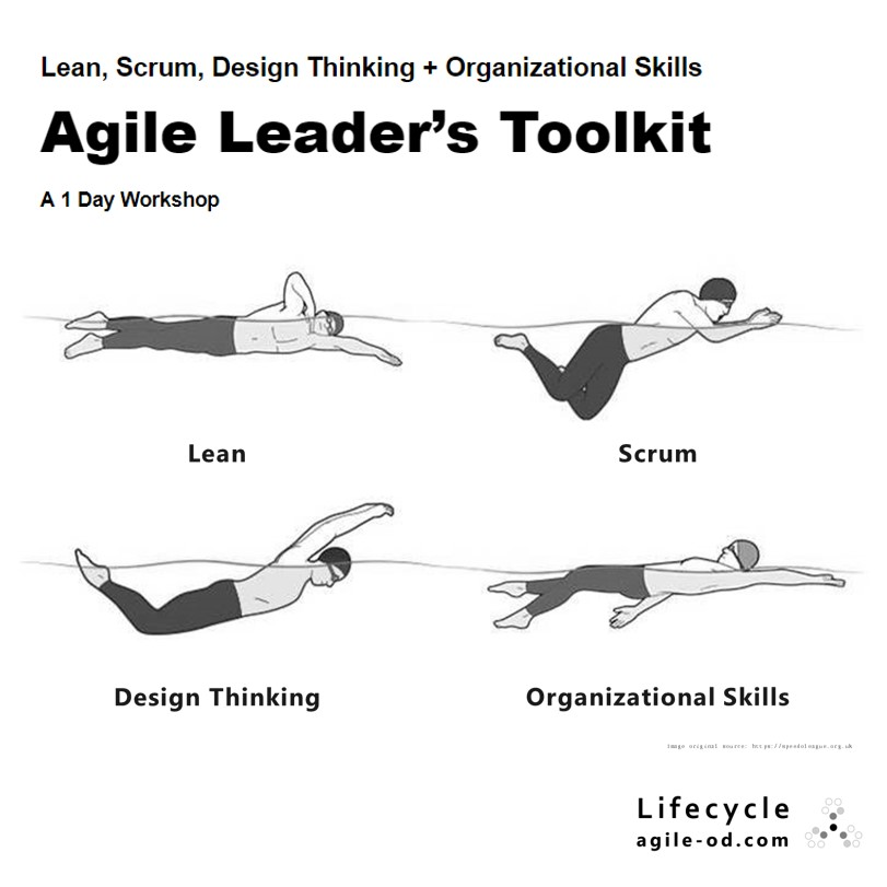 Agile Leader's Toolkit Lean Scrum Design Thinking Lifecycle agile-od.com