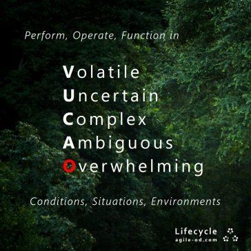 VUCAO agile-do.com Lifecycle