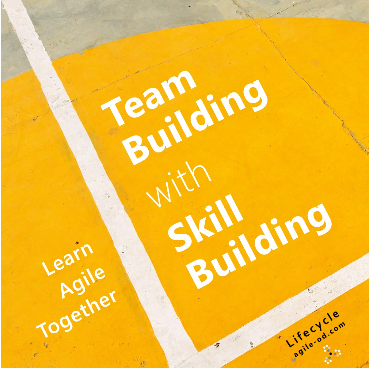 Team Building with Skill Building
