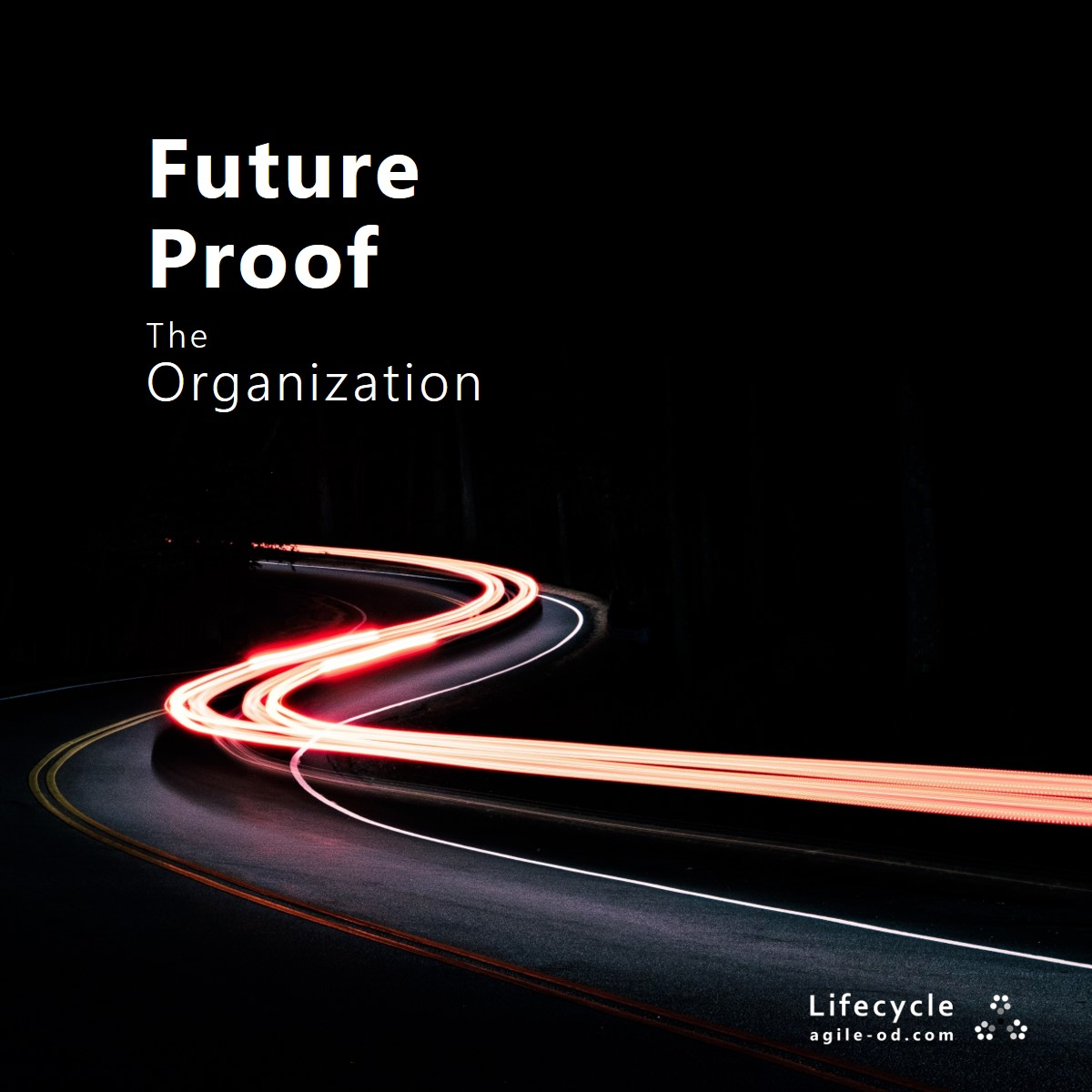 Future Proof the Organization - Lifecycle - agile-od.com