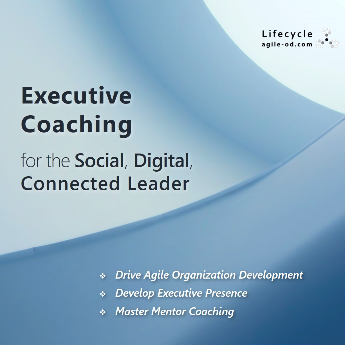 Executive Coaching for the Social Digital Connected Leader - Lifecycle - agile-od.com