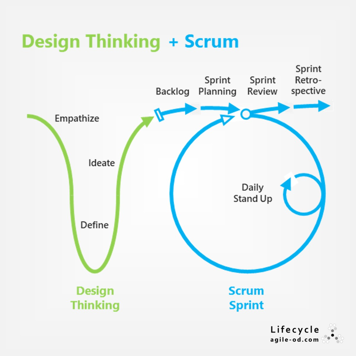 Try Design Thinking + Scrum | agile-od.com | Lifecycle