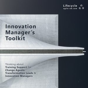 Innovation Manager's Toolkit - Lifecycle - agile-od.com