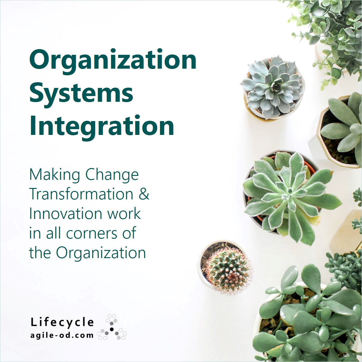 Organization Systems Integration agile-od