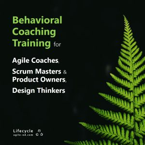 Behavioral Coaching Training for Agile Coaches, Scrum Masters and Design Thinkers