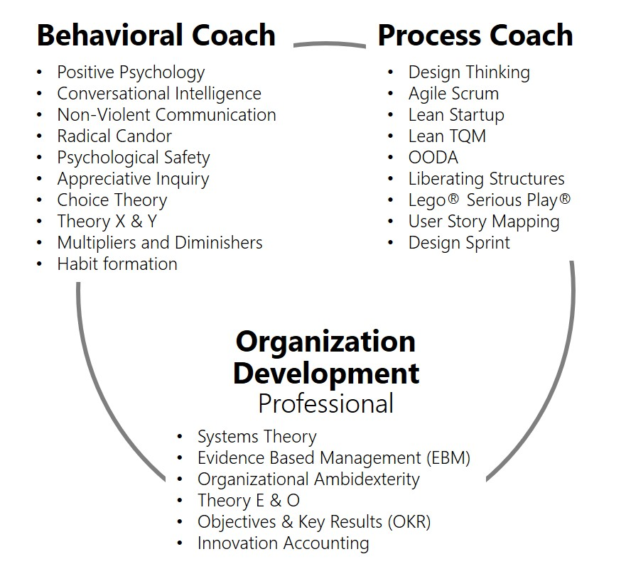 Coach Takeshi: Behavioral Coach, Process Coach, Organization Development Professional