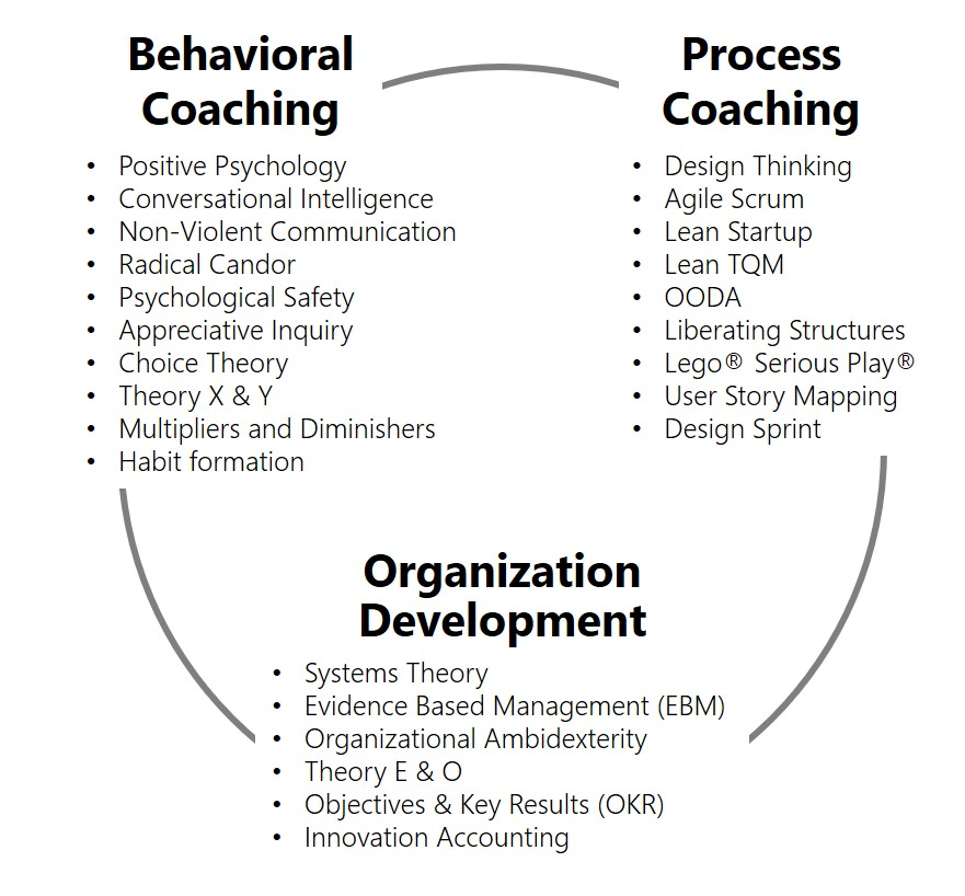 Hybrid Organization Development with Behavioral Coaching and Process Coaching - agile-od.com