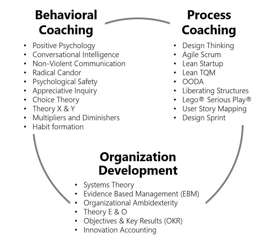 Hybrid Organization Development with Behavioral Coaching and Process Coaching - agile-od.com