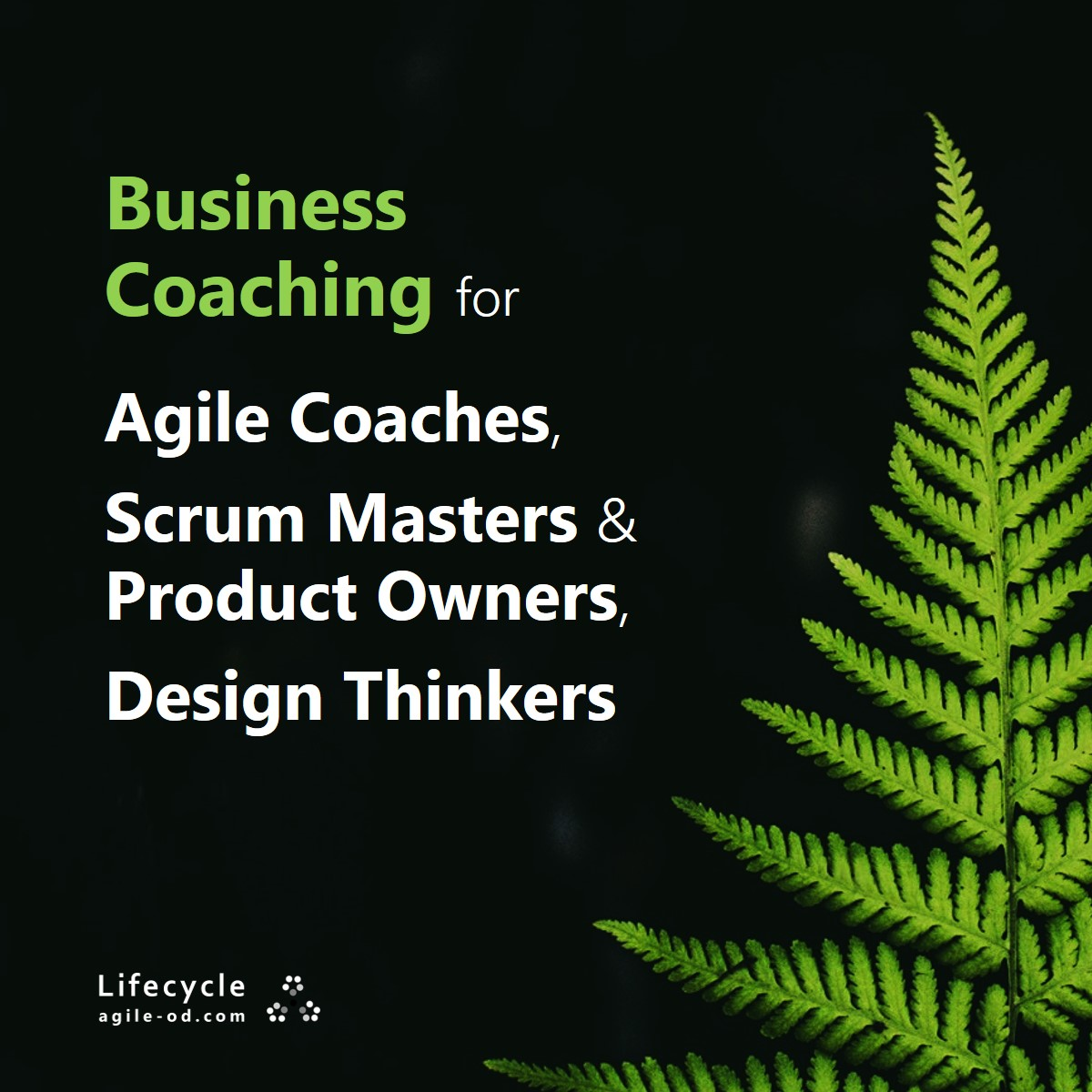 Business Coaching for Agile Coaches & Design Thinkers - agile-od.com
