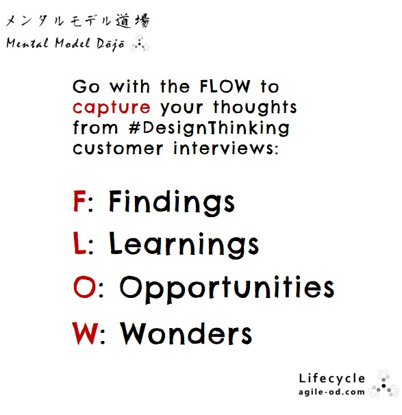 Go with the FLOW to capture your thoughts from Design Thinking customer interviews | agile-od.com