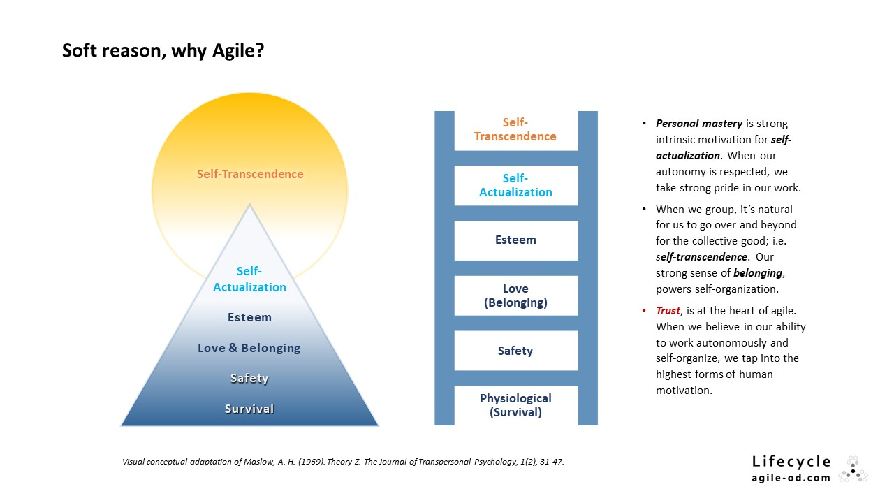 Soft reason, why Agile?
