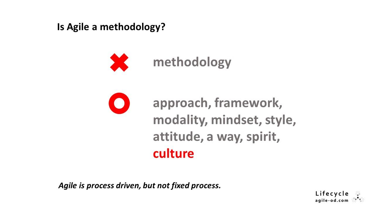 Is Agile a methodology?