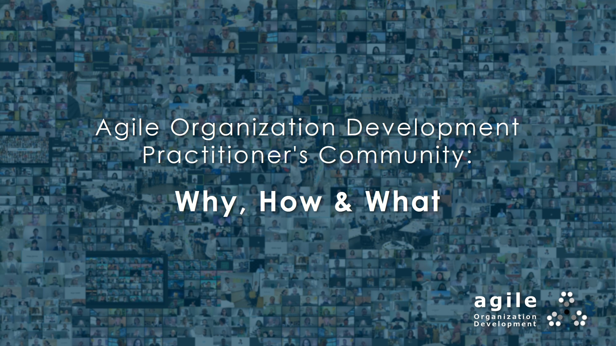 Why How What of Agile OD Community