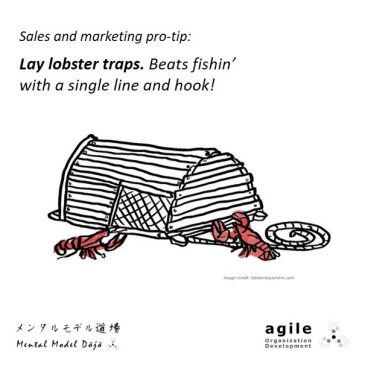 Lay Your Lobster Traps
