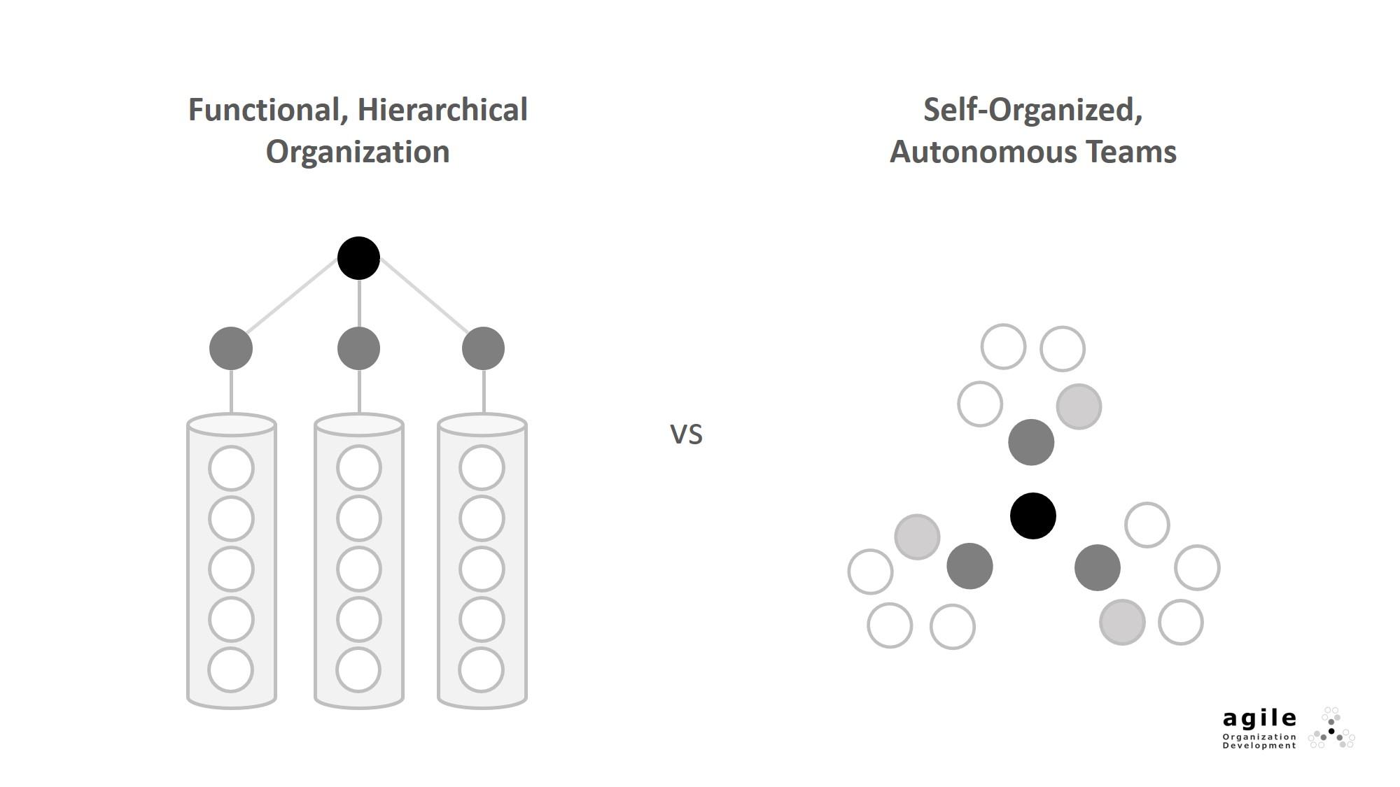 Traditional vs agile organizations