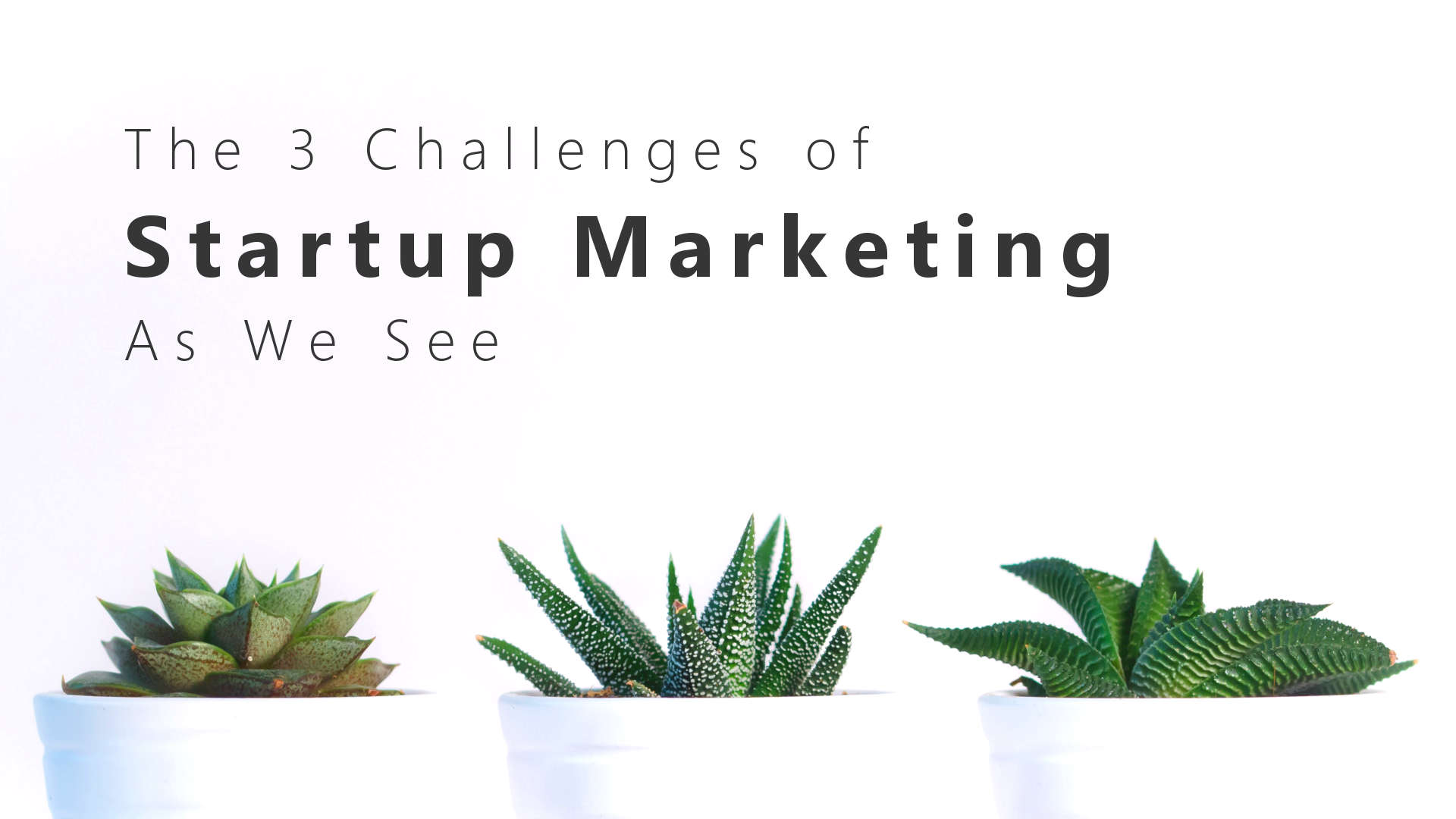 3 Challenges of Startup Marketing | agile-od.com by Lifecycle